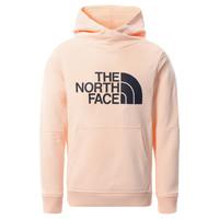 vaatteet Tytöt Svetari The North Face DREW PEAK HOODIE 2.0 Vaaleanpunainen