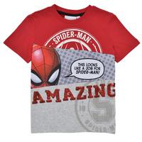 vaatteet Pojat Lyhythihainen t-paita Desigual 21SBTK08-3005 Monivärinen