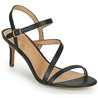 kengät Naiset Sandaalit ja avokkaat Lauren Ralph Lauren LANDYN Musta