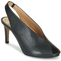 kengät Naiset Sandaalit ja avokkaat Perlato 11794-VENUS-NOIR Musta