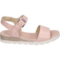 kengät Naiset Sandaalit ja avokkaat Rizzoli BK602 Ruusu