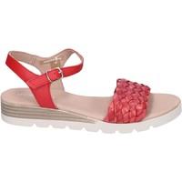 kengät Naiset Sandaalit ja avokkaat Rizzoli BK603 Punainen