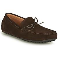 kengät Miehet Mokkasiinit Brett & Sons CHATAINE Ruskea