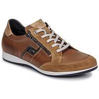 kengät Miehet Matalavartiset tennarit Fluchos 0207-AFELPADO-CAMEL Ruskea