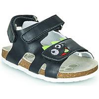 kengät Pojat Sandaalit ja avokkaat Chicco HECCO Laivastonsininen