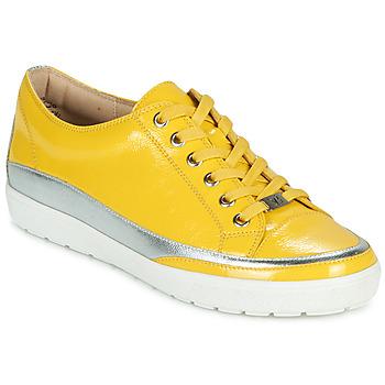 kengät Naiset Matalavartiset tennarit Caprice 23654-613 Keltainen / Hopea