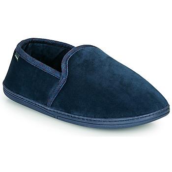 kengät Miehet Tossut DIM D CONGO C Laivastonsininen