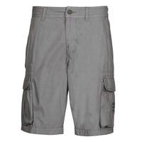 vaatteet Miehet Shortsit / Bermuda-shortsit Napapijri NORI Harmaa
