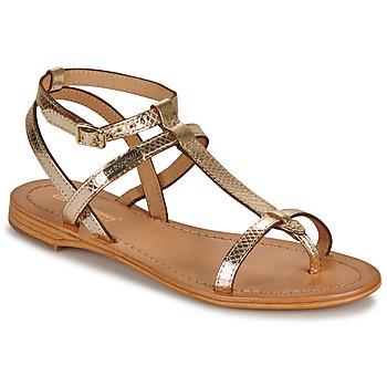 kengät Naiset Sandaalit ja avokkaat Les Tropéziennes par M Belarbi HILAN Kulta