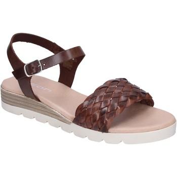 kengät Naiset Sandaalit ja avokkaat Rizzoli BK607 Ruskea