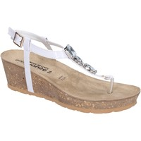 kengät Naiset Sandaalit ja avokkaat Dott House Sandaalit BK617 Valkoinen