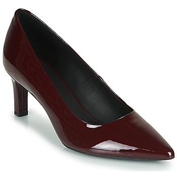 kengät Naiset Korkokengät Geox D BIBBIANA Bordeaux