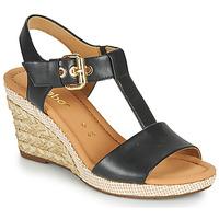 kengät Naiset Sandaalit ja avokkaat Gabor 6282457 Musta