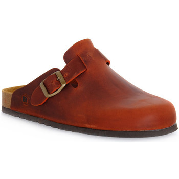 kengät Puukengät Bioline RUGGINE INGRASSATO Arancione