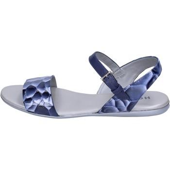 kengät Naiset Sandaalit ja avokkaat Hogan Sandaalit BK656 Sininen