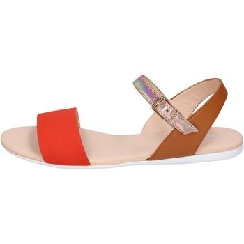 kengät Naiset Sandaalit ja avokkaat Hogan BK659 Oranssi