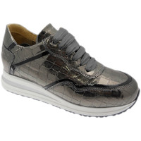 kengät Naiset Matalavartiset tennarit Calzaturificio Loren LOC3936gr grigio