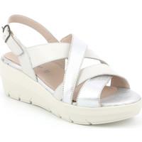 kengät Naiset Sandaalit ja avokkaat Grunland SA1877 Valkoinen