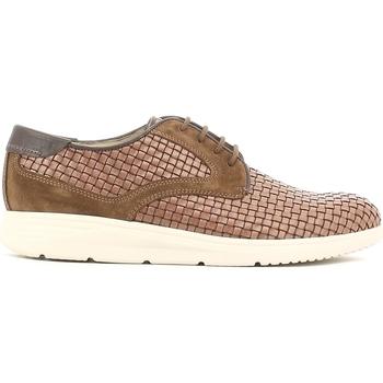 kengät Miehet Derby-kengät Soldini 19818 I S87 Ruskea