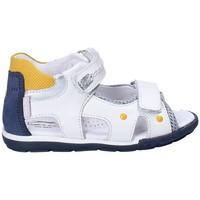 kengät Lapset Sandaalit ja avokkaat Balducci CITA1053 Valkoinen