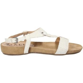 kengät Naiset Sandaalit ja avokkaat Mally 4681 Valkoinen