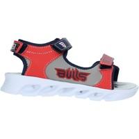 kengät Lapset Sandaalit ja avokkaat Bulls S19-SBL838 Sininen