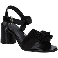 kengät Naiset Sandaalit ja avokkaat Elvio Zanon EJ5605P.L Musta