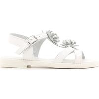 kengät Lapset Sandaalit ja avokkaat Lulu LT080056L Valkoinen