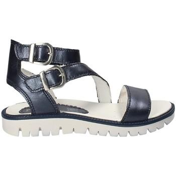 kengät Lapset Sandaalit ja avokkaat Primigi 1382333 Sininen