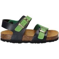 kengät Lapset Sandaalit ja avokkaat Bamboo BAM-14 Vihreä
