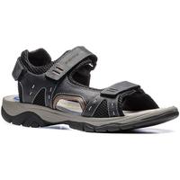 kengät Miehet Sandaalit ja avokkaat Stonefly 108692 Sininen