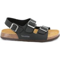kengät Miehet Sandaalit ja avokkaat Grunland SB3645 Musta