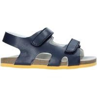 kengät Lapset Sandaalit ja avokkaat Chicco 01063384000000 Sininen