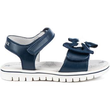 kengät Lapset Sandaalit ja avokkaat Lumberjack SG41906 005 S01 Sininen