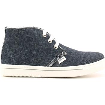 kengät Lapset Bootsit NeroGiardini P633810M Sininen