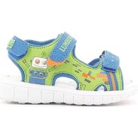 kengät Lapset Sandaalit ja avokkaat Lumberjack SB09806 001 M67 Punainen