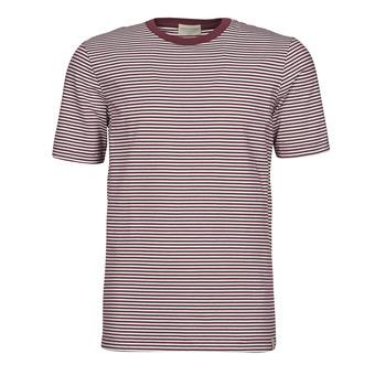 vaatteet Miehet Lyhythihainen t-paita Scotch & Soda 160847 Punainen / Valkoinen