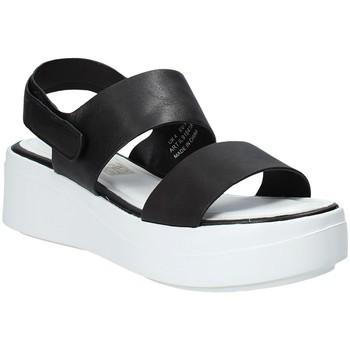 kengät Naiset Sandaalit ja avokkaat Impronte IL91541A Musta