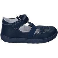 kengät Lapset Sandaalit ja avokkaat Naturino 2012164-01-9102 Sininen