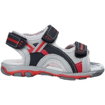kengät Lapset Sandaalit ja avokkaat U.s. Golf S19-SUK466 Sininen