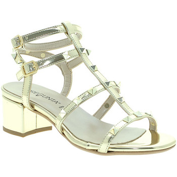 kengät Naiset Sandaalit ja avokkaat Pregunta IL68085-BB Muut