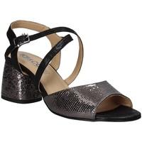 kengät Naiset Sandaalit ja avokkaat IgI&CO 3186200 Musta