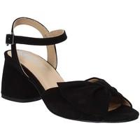 kengät Naiset Sandaalit ja avokkaat IgI&CO 3186533 Musta