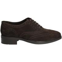 kengät Naiset Derby-kengät Marco Ferretti 140424 Ruskea