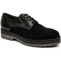 kengät Naiset Derby-kengät Nero Giardini A806560D Musta
