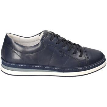 kengät Miehet Matalavartiset tennarit IgI&CO 3138100 Sininen
