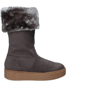 kengät Naiset Talvisaappaat Fornarina PI18RY1127S006 Harmaa