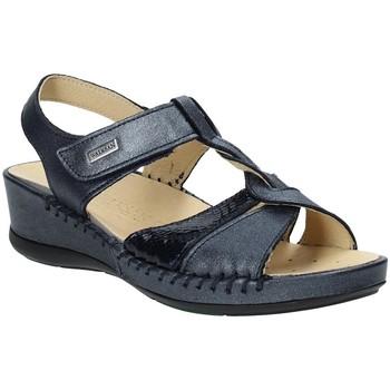 kengät Naiset Sandaalit ja avokkaat Susimoda 2379-03 Sininen