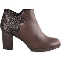kengät Naiset Nilkkurit IgI&CO 2196211 Ruskea