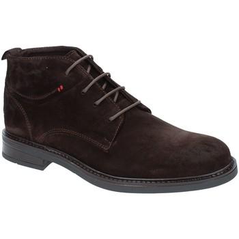 kengät Miehet Bootsit Rogers 2020 Ruskea